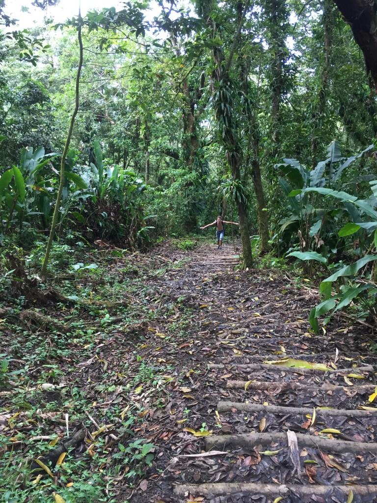 Mit Stufen angelegter Trail