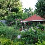 Garten in P